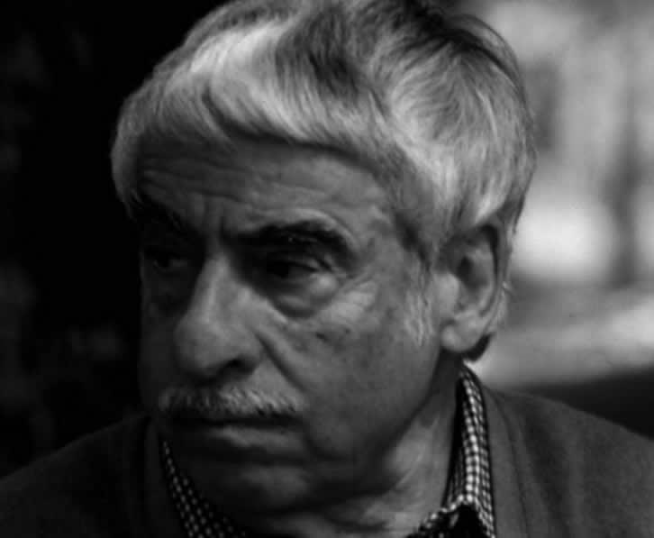 José Luis Fernández del Amo